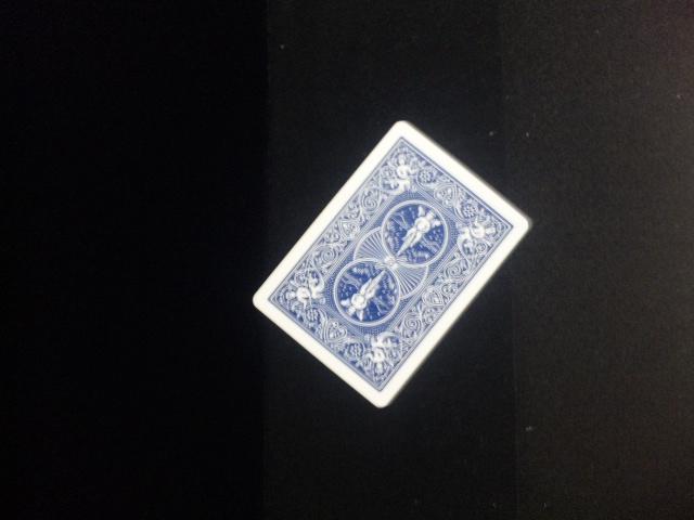 DVC00963.jpg