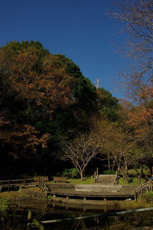 121208-17yatoyama11.jpg