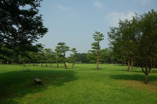 120728-11shibafu hiroba view