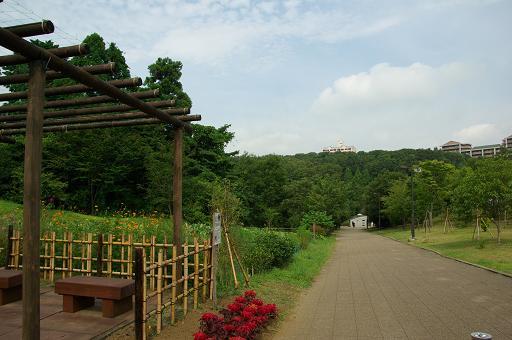 120811-02oyamadairi view