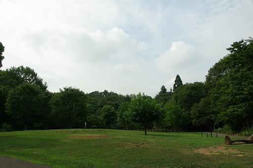 120811-11satoyama hiroba