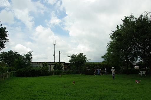 120812-21hirukawa view