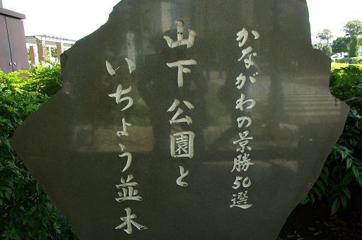 120813-01park of yamashita