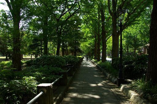 120813-17park way