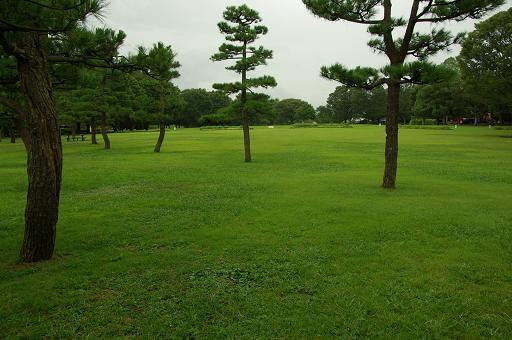 120814-13shibafu hiroba