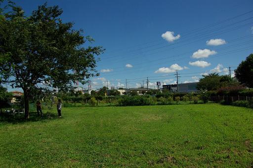 120819-17hirukawa view01