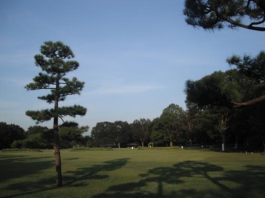 120830-10shibafu hiroba view