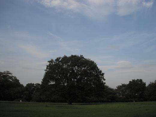 120913F-06 serizawa park