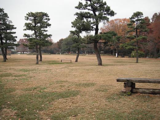 121123-07shibafu hiroba