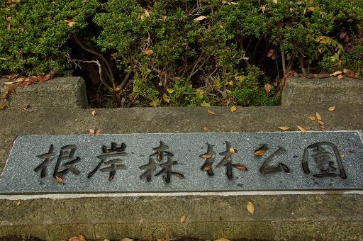 121124-01negishi shinrin kouen