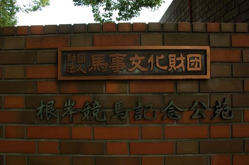121124-18negishi keiba kouen