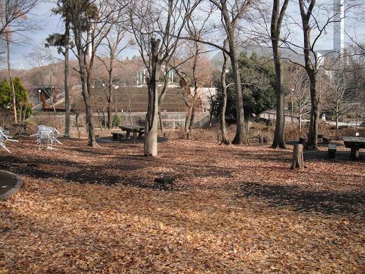 121229-09park view