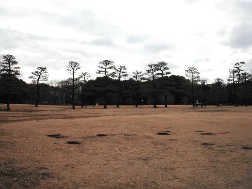 121229-15shibafu hiroba view