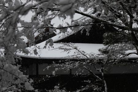 ginkakuji1402_04.jpg
