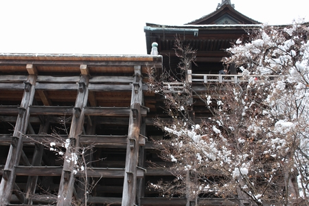 kiyomizu1402_05.jpg