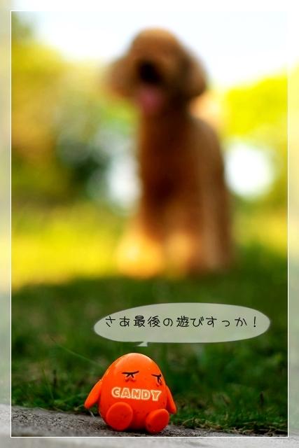 でぃー子07