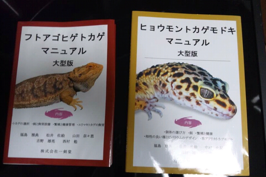 fc2blog_20121002211204805.jpg