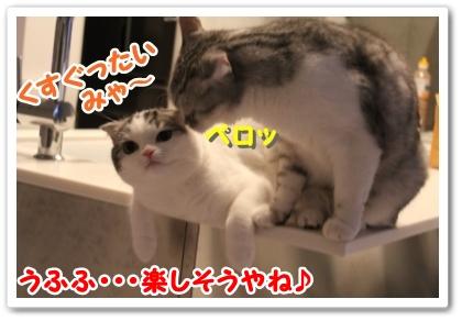 03_20121020003317.jpg