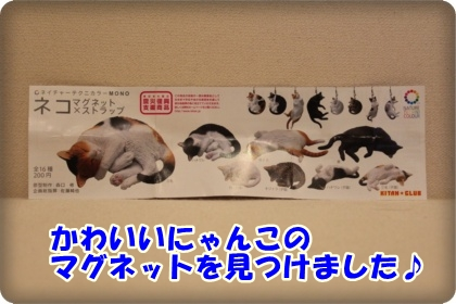 1-001_20120603003223.jpg