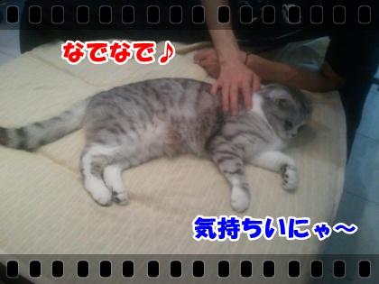1-001_20120619034150.jpg