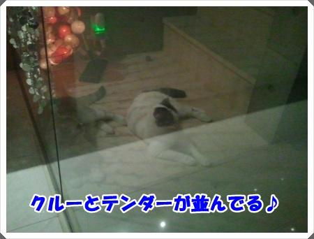 1-001_20121027013712.jpg