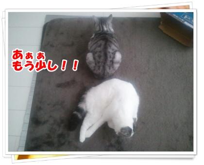 1-001_20121108232912.jpg