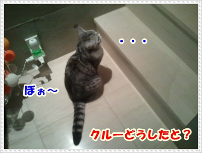 1_20120508004937.jpg