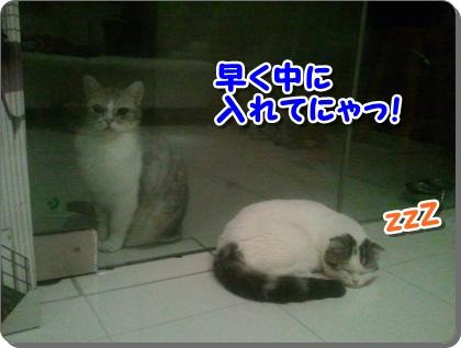 1_20120807225452.jpg