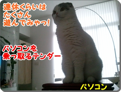 1_20120813225416.jpg