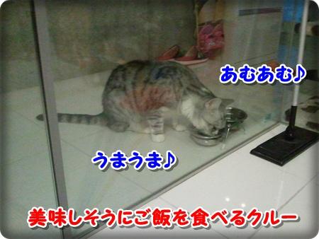 1_20121007001720.jpg