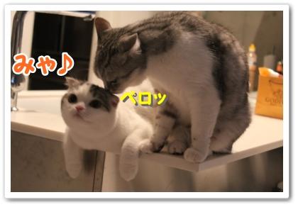 1_20121020000304.jpg