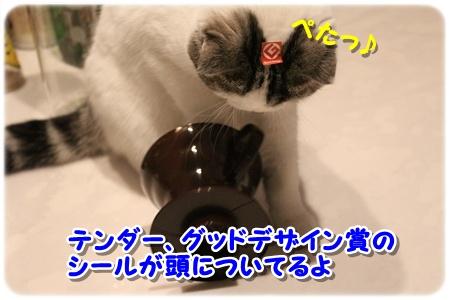 1_20121202025802.jpg