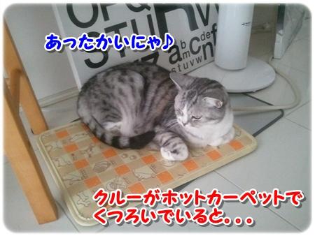 1_20121203011912.jpg