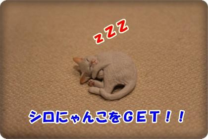 2-002_20120603003222.jpg