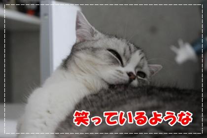 2-002_20120616180917.jpg