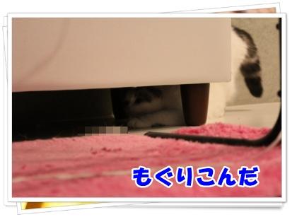 2-002_20120616183916.jpg