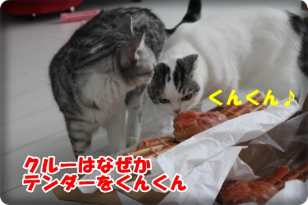 2-002_20121112214159.jpg