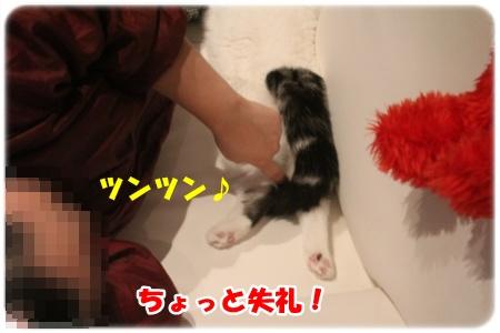 2-002_20130112003035.jpg