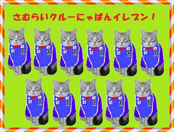 20110129190237dcb_20120730004443.jpg