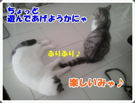 2012-09-01 16.56.38-005