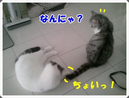 2012-09-01 16.56.34-001