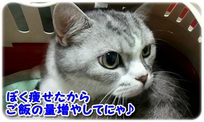 2012_07_14_10_42_52.jpg