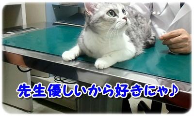 2012_07_14_10_45_59.jpg