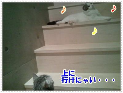 2_20120508004936.jpg