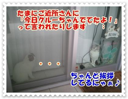 2_20120525014421.jpg