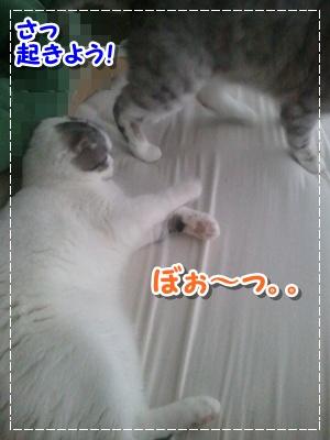 2_20120712194151.jpg