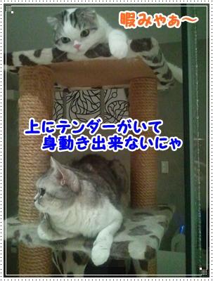2_20120729050053.jpg