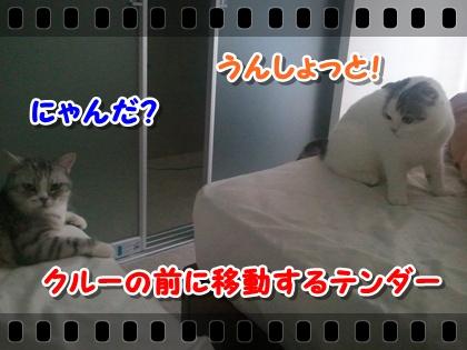 2_20120807215228.jpg