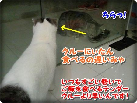 2_20121007001719.jpg
