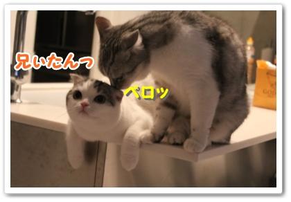 2_20121020000303.jpg